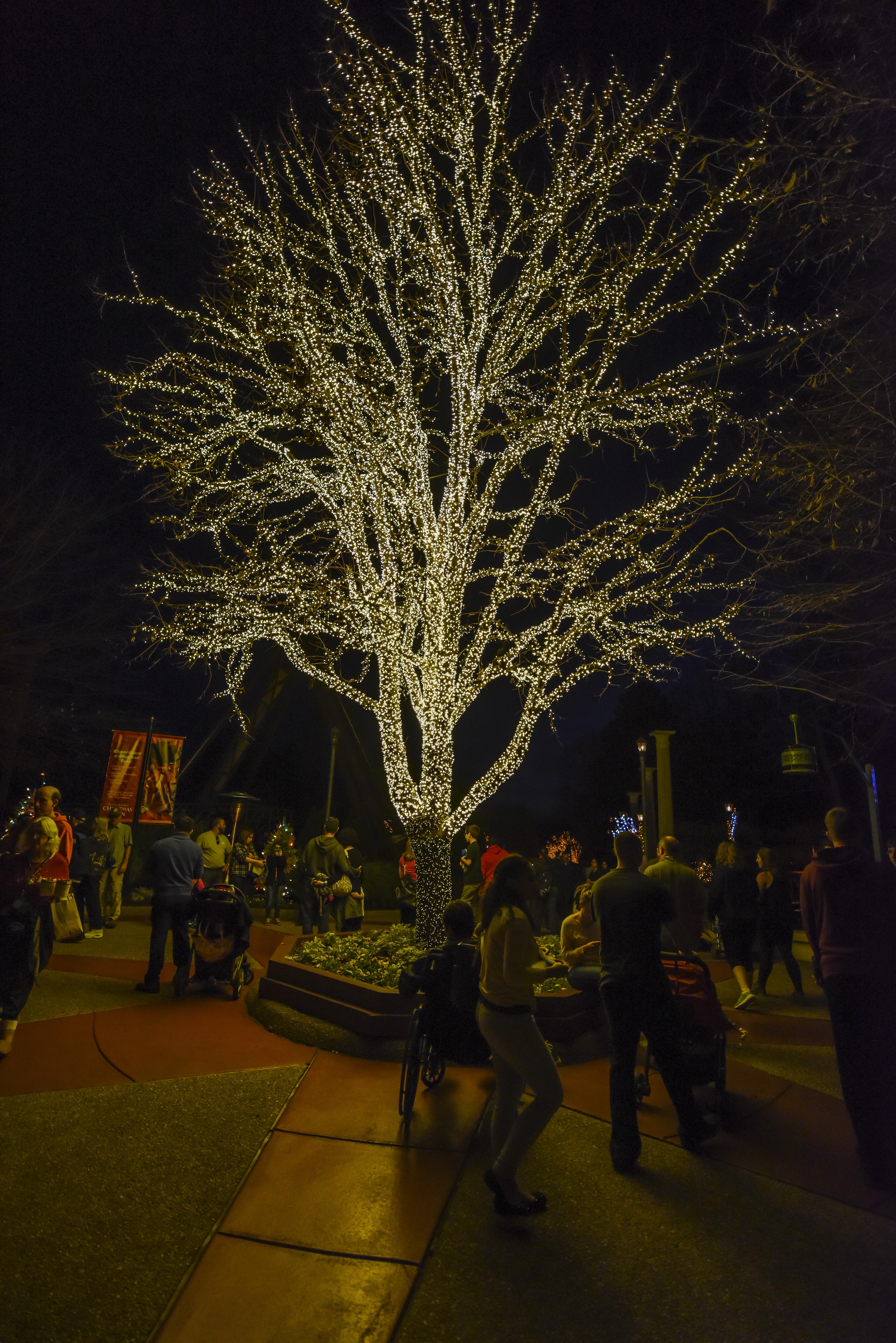 Busch Gardens Williamsburg Christmastown 2015 | Slothead\'s Blog
